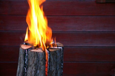 Safe Tree Stump Removal - 5 Methods   DoItYourself.com