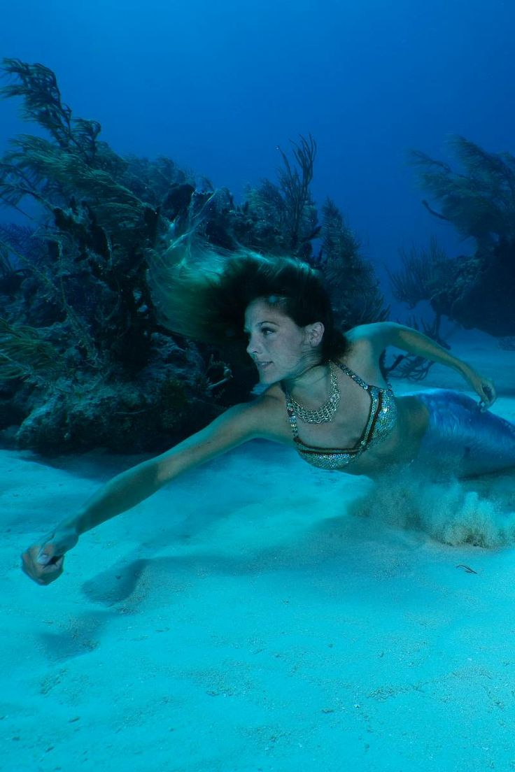 17 Best Images About Mermaids And Fairies On Pinterest