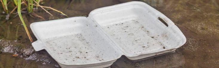 Movimento Lixo Cidadão – Mito ou Verdade: Isopor é um vilão para a natureza? Apesar de o isopor não ser biodegradável e levar cerca de 150 anos para se decompor na natureza, ele também é 100% reciclável e não contém produtos tóxicos ou CFCs em sua composição. Ele deve ser separado junto a outros resíduos de plástico, limpo (sem adesivos ou papéis grudados a ele) e encaminhado para um ponto de recolhimento adequado