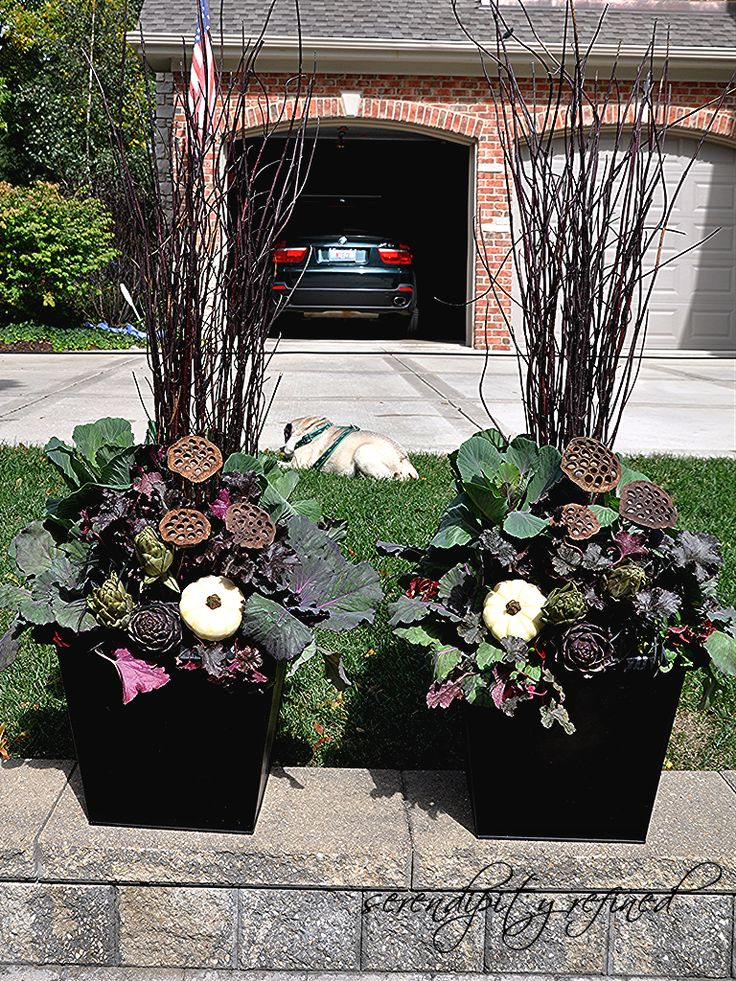 Serendipity Refined: Fall Planters And Urns: What I DIDNu0027T Do This .