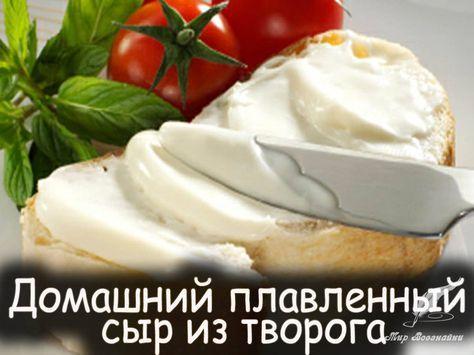 Домашние молочные заготовки - Вкусные рецепты от Мир Всезнайки