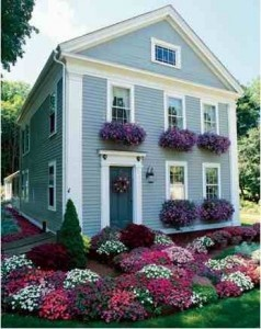 Love the flower boxes and colors! blue, purple, white
