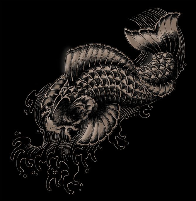 17 best images about ben kwok on pinterest pegasus for Lucky koi fish
