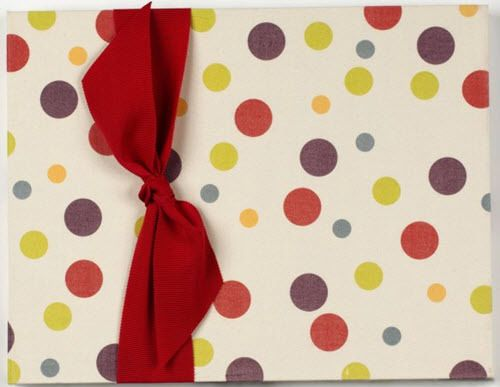 Adoption-Baby-Memory-Book-and-Album-Big-Dots-Cover