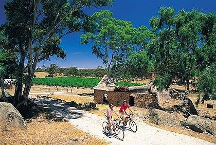 Clare Valley Riesling Trail. #todo #clare