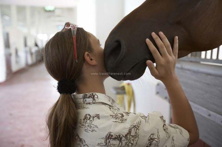 Dubai horse racing - Girl nestling her face against the horse  #uae #arab #dubai #horseracing #middleeast #adventure #experience #fun #travel #traveltherenext