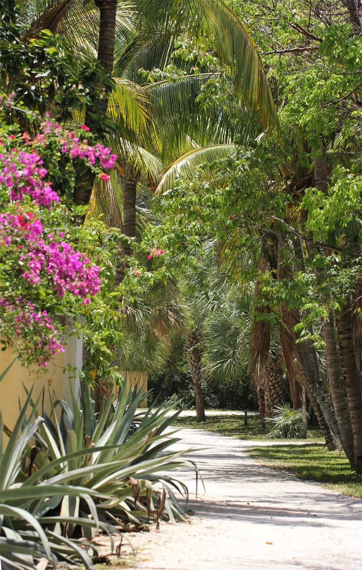 17 best FLORIDA TO VISIT images on Pinterest | South florida, Beach ...