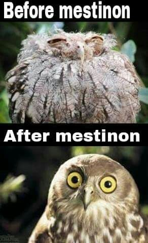 Myasthenia Gravis funny! :-)