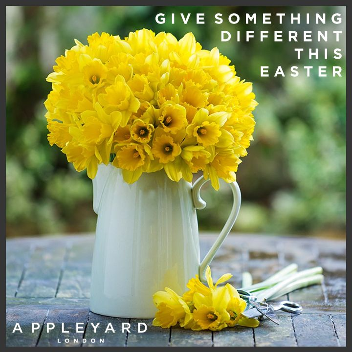 Give Something Different This Easter