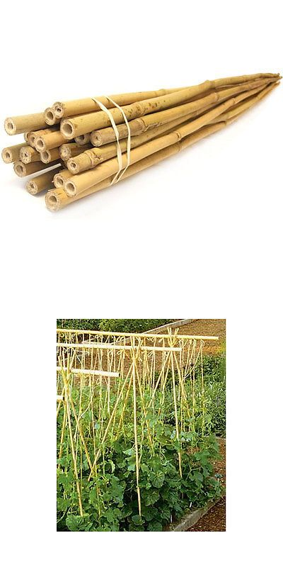 Plant Ties and Supports 181001: Lot Of 10 25 Bamboo Stakes 3 4 6 8 Ft Lengths Vegetable Gardens Tomato + -> BUY IT NOW ONLY: $110 on eBay!