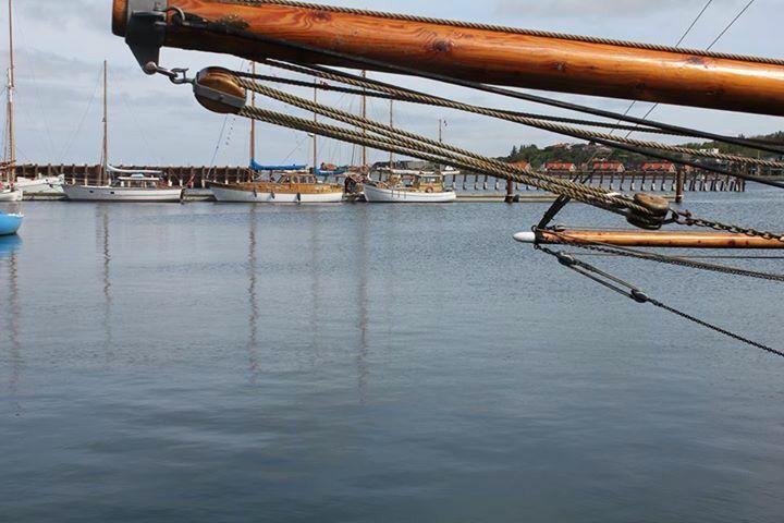 Lemvig havn