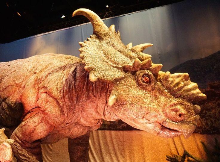 SNEAK PEEK! Jurassic World: The Exhibition http://tothotornot.com/2016/03/hot-jurassic-world-the-exhibition-melbourne-museum-9-nicholson-st-carlton/?utm_campaign=coschedule&utm_source=pinterest&utm_medium=TOT%3A%20HOT%20OR%20NOT&utm_content=HOT%3A%20Jurassic%20World%3A%20The%20Exhibition%2C%20Melbourne%20Museum%2C%209%20Nicholson%20St%2C%20Carlton @Melbournemuseum @museumvic