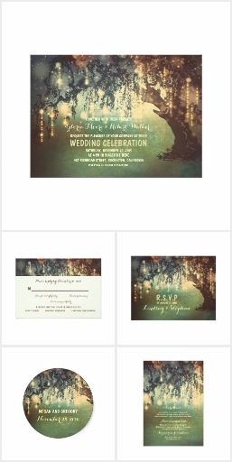 String Lights Rustic Tree Park Wedding Collection