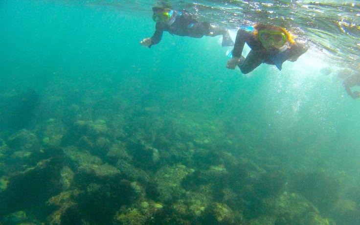 La randonnée aquatique, une activité accessible à tous et peu chère - Le Parisien
