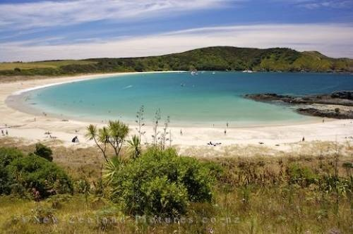 Google Image Result for http://www.new-zealand-pictures.co.nz/images/500/coastal-beach_1125.jpg