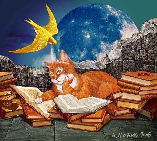 картинки кот ученый с книгой особенности монтажа
