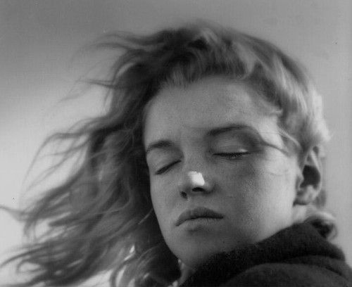 25+ best ideas about Marilyn Monroe No Makeup on Pinterest   Kelsi monroe pics, Young marilyn monroe and Marilyn monroe curves