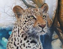 Painting of a leopard in oils / private commission.
