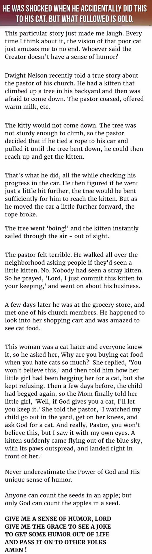 Adults hilarious stories for