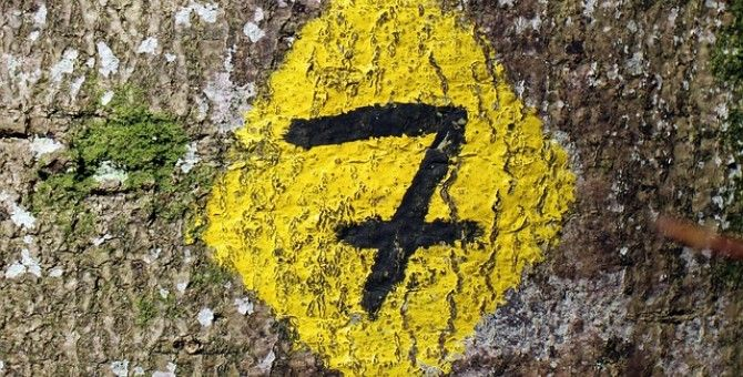 numbers 8