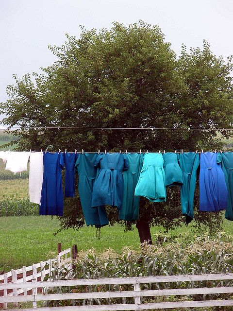 An Amish Home: Clothing Line, Lancaster Pa, Beautiful Blue, Amish Life, Pa Clothing, Blue Green, Country Living, Photo, Amish Clothing
