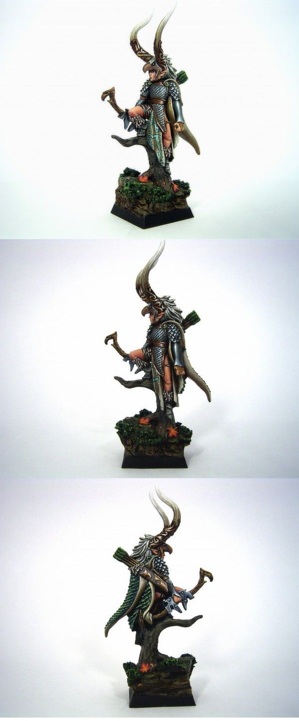Wood Elf Champion