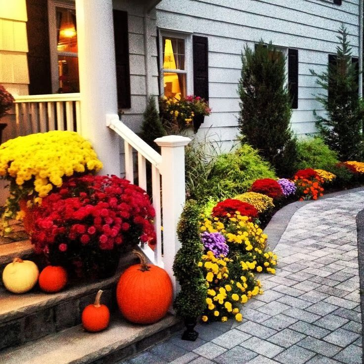 141 Best Beautiful Front Yards Images On Pinterest