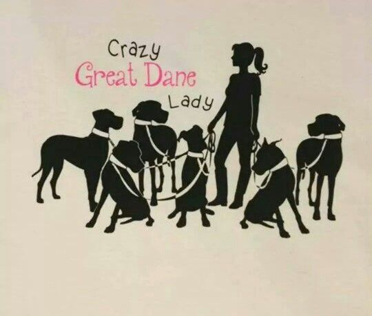 1000 ideas about great dane funny on pinterest great for Crazy mural lady
