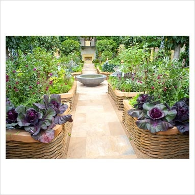 73 best Veg garden images on Pinterest