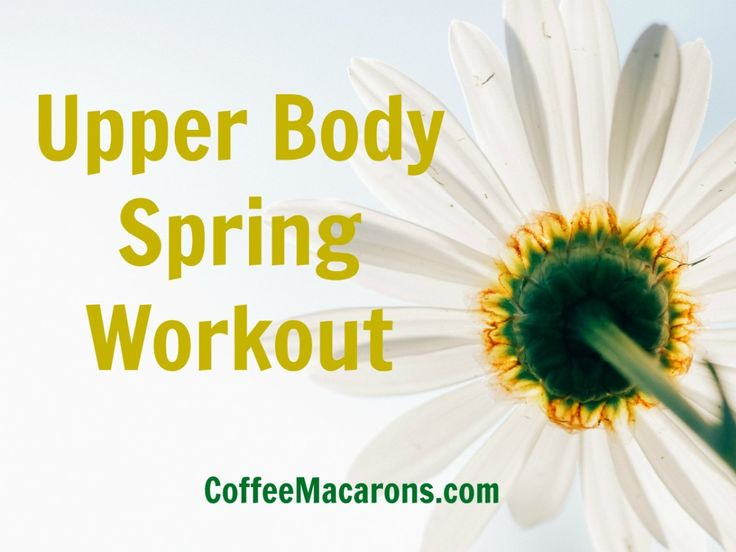 Upper Body Spring Workout