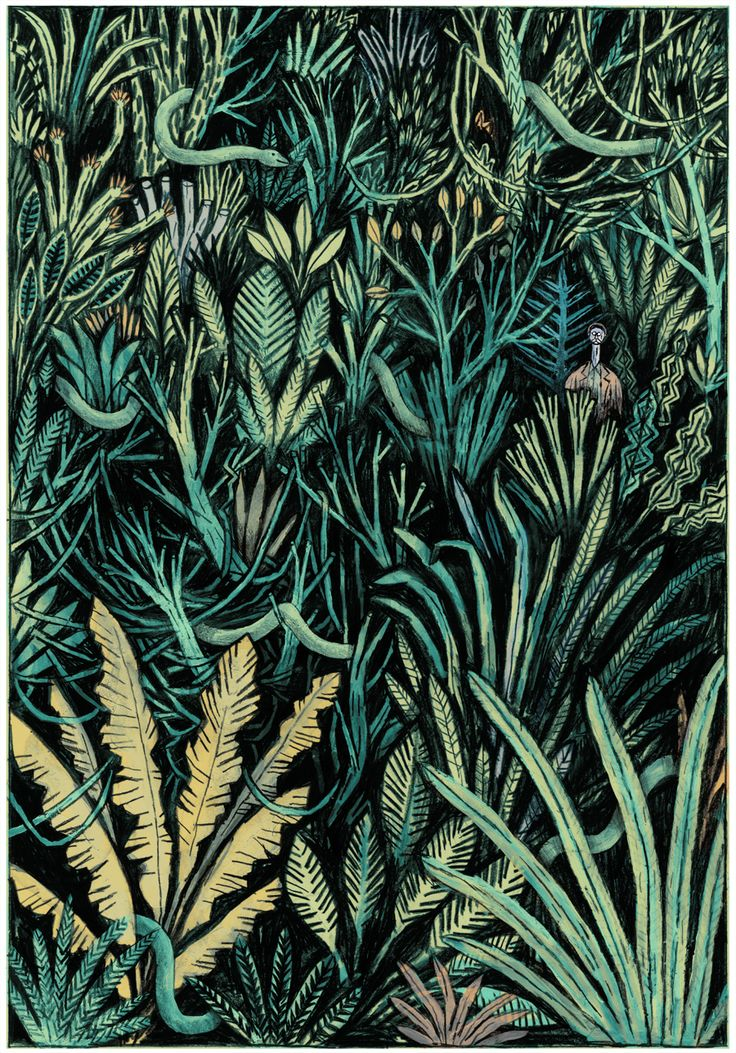 Maxime Sabourin Tropical Surface Designs Illustration
