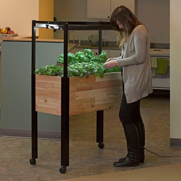 How to Grow a Kitchen Herb Garden - Indoor Planter with Lights from myPotsandPlanters.com