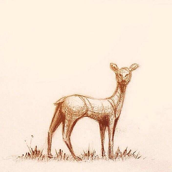 Deer by Khalid al Dakheel #artwork #sketch #drawing #illustration #cartoon