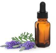Prevent fleas on your dog with a DIY lavender oil spray.