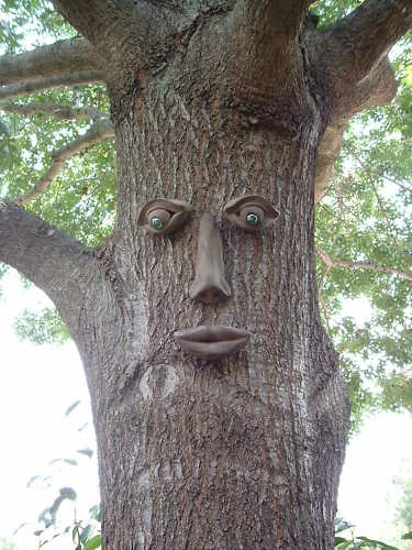 13 Best Images About Tree Faces Decor On Pinterest Trees Nottingham And Signs