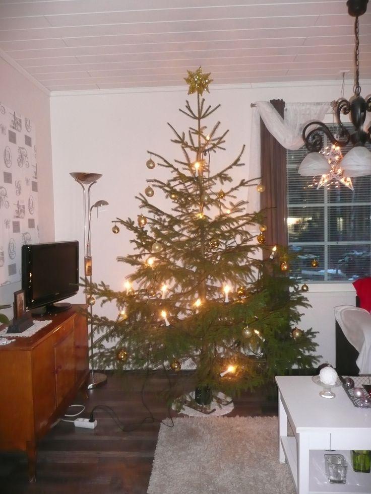 Christmas tree julgran