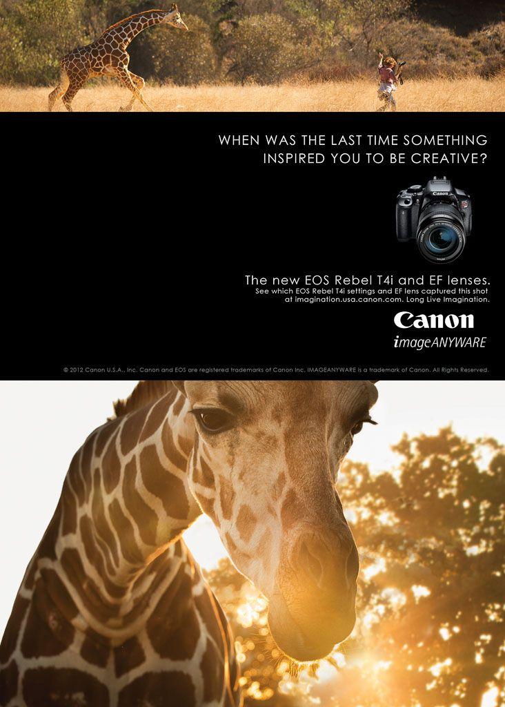 Canon:
