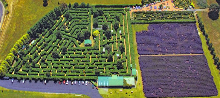 Tasmazia Fantastic assortment of mazes. Wonderful looking place - anyone been there?
