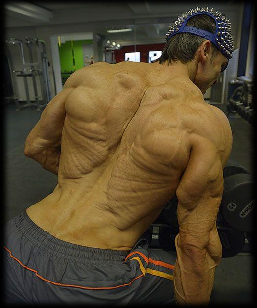 WTF? Helmut Strebl | bodybilding | Pinterest | Anatomy ...