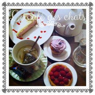 Le café des chats #Paris http://www.comme-un-poisson-dans-leau.fr