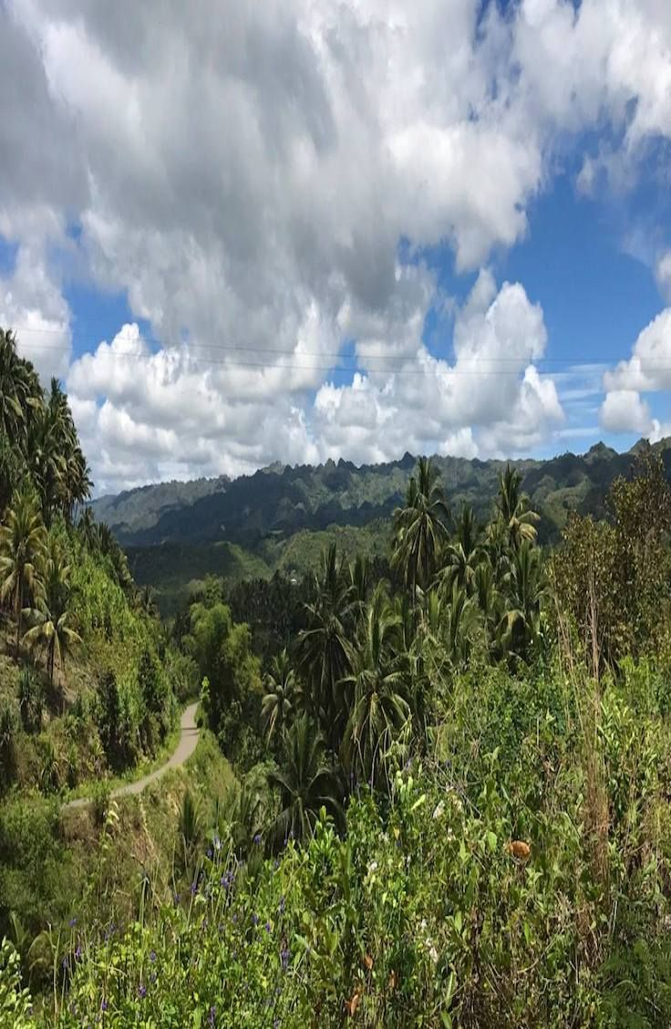 Osmena Peak, Cebu: Guide