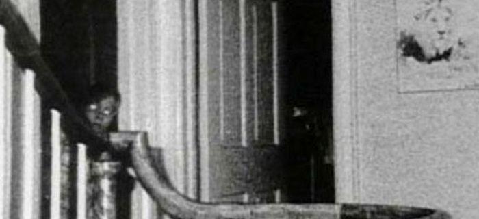 25 Filmes de Terror Baseados em Fatos Reais -   Nem sempre há uma mensagem no início do longa indicando que a produção é BASEADA EM FATOS REAIS. Até mesmo porque o cinema de horror já comprovou que essa frase é sensacionalista, servindo apenas para …