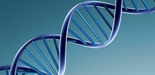Diseñan estrategia para facilitar detección del cáncer hereditario -   Al identificar genes alterados   Investigadores de tres centros españoles diseñaron una estrategia de diagnóstico genético que en un solo paso secuencia los genes que predisponen a desarrollar cáncer. El estudio, publicado en la revista Scientific Reports, significa, según sus...