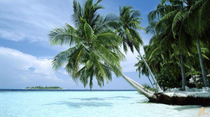 goloro.com top 5 travel planning websites