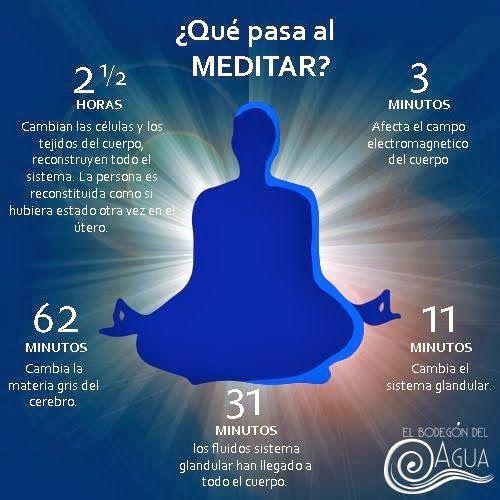 Beneficios de la meditacion     Estudios recientes han demostrado que la meditación puede provocar cambios   considerables en la estructura...