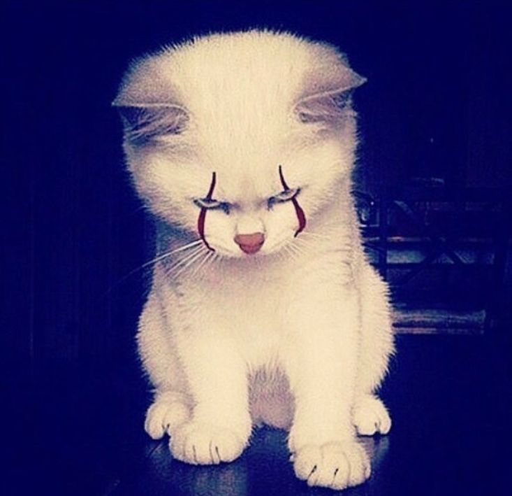 KITTYWISE THE CLOWN