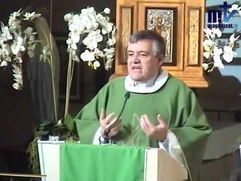 """MI RINCON ESPIRITUAL: Homilía de hoy: """"Lo que hay en los milagros de Jes..."""