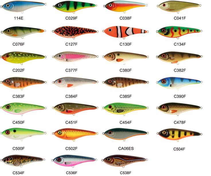 15 best sassy shad swim baits images on pinterest bait for Walmart with live fish near me