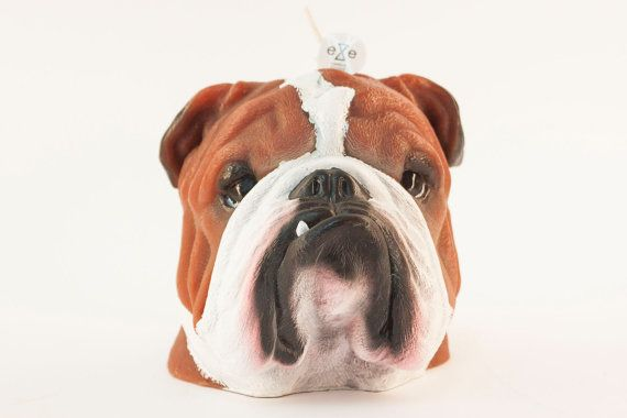Painted Bulldog Scented Candle Scent Painted / Vanilla + Orange Size Candle - 16x 15x 13 cm, Weight 1kg