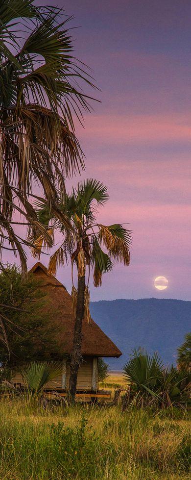 Lake Manyara National Park//Le parc national du lac Manyara est un parc national du Nord de la Tanzanie. Son entrée principale est située à 120 km de la ville d'Arusha, non loin de la petite ville de Mto wa mbu. Wikipédia